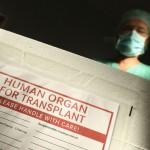 Со законските измени, донатори на органи ќе се погребуваат на државен трошок