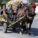 Расте институционалната дискриминација врз Ромите