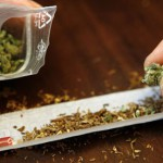 Вашингтон и Орегон легализираа употреба на марихуана