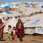 ОН: Рекордна цифра на бегалци и раселени во светот