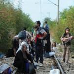 Во текот на минатата недела царината при преглед на вагони открила 50 мигранти