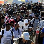 УНХЦР: Во Србија за една ноќ влегле 7000 бегалци