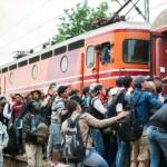 Вчера издадени нови 1217 потврди за барање азил