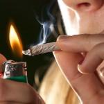 Ќе биде ли следниот голем бизнис во Македонија, медицинската марихуана?