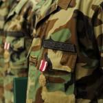Отпуштените професионални војници се враќаат во институциите