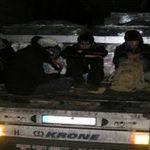 Во камион откриени 31 мигрант, возачот во бегство
