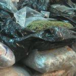 Запленети 108 килограми марихуана вредна милион евра