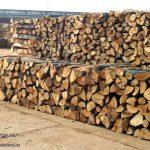Незаконски исекле 11,25 кубни метри дрва
