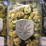 Калифорнија одобри рекреативна употреба на марихуаната