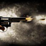 Пукање во куќа во Мала Речица