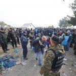 Тревога во ЕУ: Инфилтрирани терористи во новиот бран бегалци