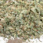 Италијанската полиција лани  запленила 41,6 тони албанска марихуана