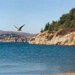 Потрагата трае два часа: Машко лице исчезна во Охридско Езеро