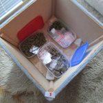 Полицијата во Кичево приведе продавач на дрога