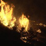 75-годишна жена осомничена за пожар во Македонски Брод