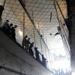 Владата го усвои предлог-законот за амнестија