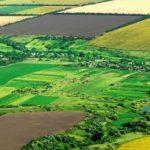 Во подготовка измени во Законот за консолидација на земјоделско земјиште