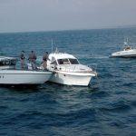 Италија запленила 36 тони албанска дрога во 2017 година
