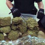 Аргентинската полиција  заплени речиси 10 тони марихуана