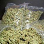 Кривична пријава за полициски службеник– дилер на дрога