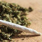 Приведен дваесет и четиригодишен скопски дилер на дрога