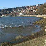 Екологистите бараат од владата мораториум за градење на брегот на Охридското Езеро