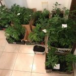 Триесет и пет годишен кумановец продавал дрога во Скопје
