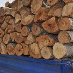 Скопјанка измамена од лажен продавач на дрва