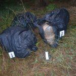 Полицијата заплени 50 килограми марихуана во Струмичко