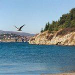 Стружанец без дозвола изградил автокамп крај Охридското Езеро