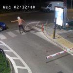 """(Видео) Запалени палми во кругот на болницата ,,Жан Митрев"""", сторителите снимени со камера"""