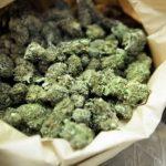 Во возило пронајдени и одземени 800 грама марихуана, поднесени две кривични пријави