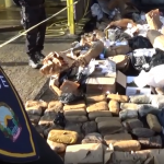 (Видео) Уништени околу 170 килограми дрога во Дрисла