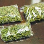Приведен гостиварец со марихуана