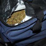 Уапсени двајца државјани на Албанија кај кои биле најдени 2 килограми марихуана