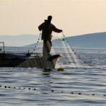 Запленети рибарски мрежи со пастрмка во Охридското Езеро