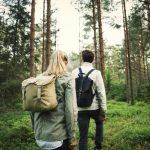 Воведена делумна забрана за движење во шума