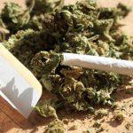 Обвинет дилер на марихуана и амфетамин