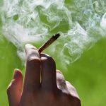 Скопјанец обвинет за трговија со марихуана