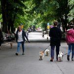 Германија воведува закон за задолжително шетање на кучињата двапати на ден