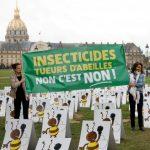 Европскиот суд ја потврди француската забрана на пестициди што им штетат на пчелите
