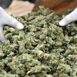 Приведени тројца дилери на дрога, меѓу нив и бугарски државјанин