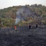 Жител на Шипковица го предизвикал пожарот, запалил отпад до шумата