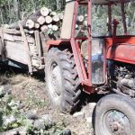 Референт за сеча во Охрид неовластено издавал фиктивни испратници за превоз на огревно дрво
